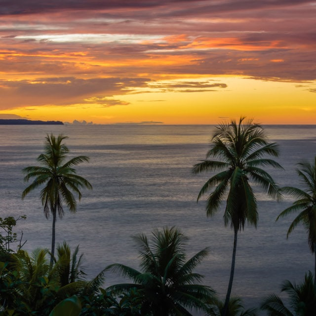 Plage - Voyage Costa Rica